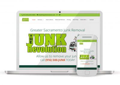 The Junk Revolution