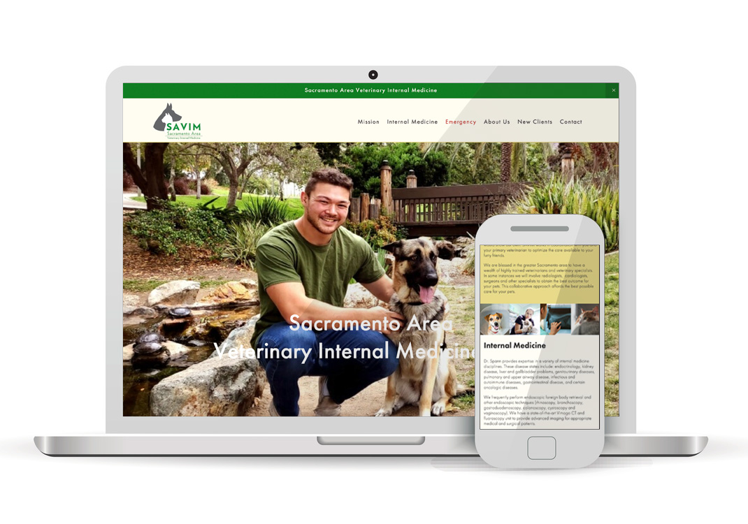 Sacramento Area Veterinary Internal Medicine Sacramento Squarespace Website Design